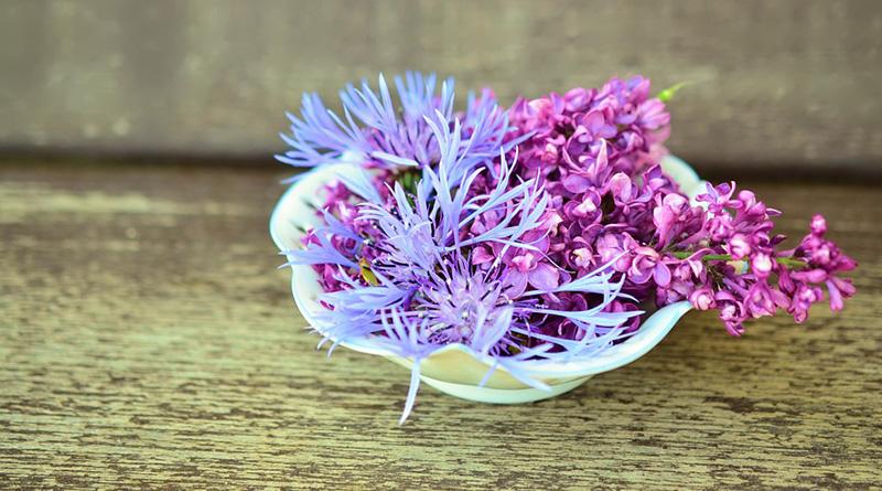 Cuisinez avec les fleurs de votre jardin
