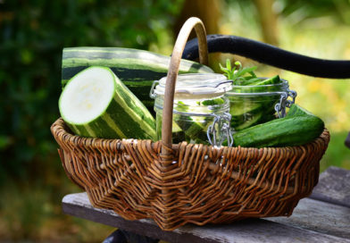 salade jar végétarienne