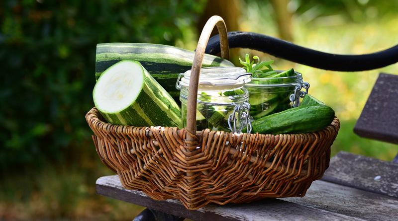 Salade en bocaux : 5 recettes pour l'été