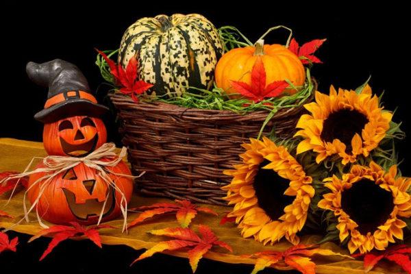 Votre Halloween Zéro Déchet