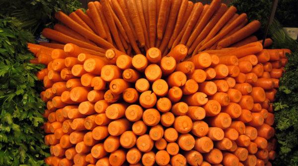 Farandole de carottes dans l'assiette