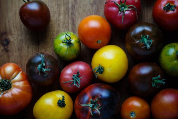 La tomate, un fruit plein de bienfaits