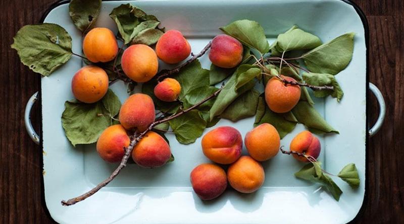 couv-abricot